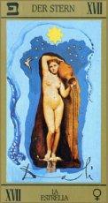 画像8: サルバドール・ダリ タロットカード スペイン語版(ベルベット仕様) (8)