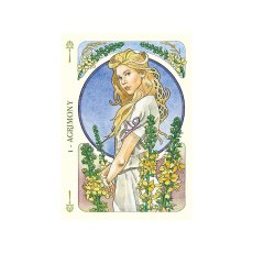 画像2: フラワーズオラクルカード (2)