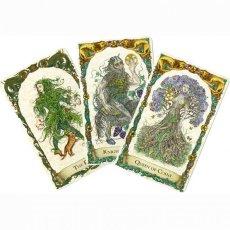 画像3: ミスティカルクリーチャーズタロット スタンダードエディション  The Mythical Creatures - gilded and water-coloured. Standard edition (3)