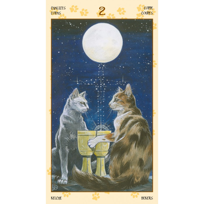 画像1: ペイガンキャッツタロット Tarot of Pagan Cats (1)